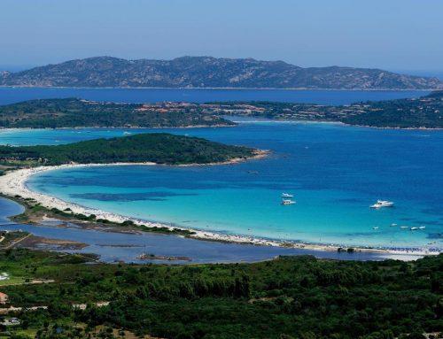 Swimtheisland San Teodoro